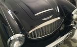 Auto kuin Sikstuksen kappeli: Austin-Healey 3000