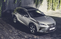 Lexus NX, Immediately deliverable car