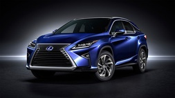Lexus RX, Immediately deliverable car