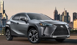 Lexus UX, Immediately deliverable car