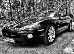 Jaguar XK-R Cabriolet 2004